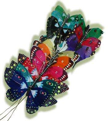 papillon211.jpg