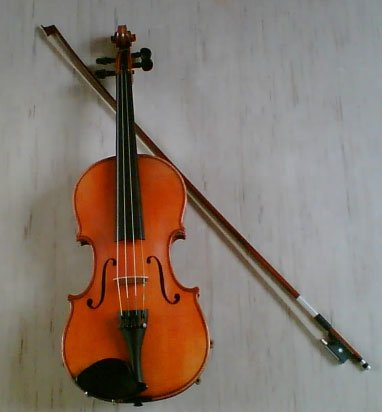 violongd1.jpg